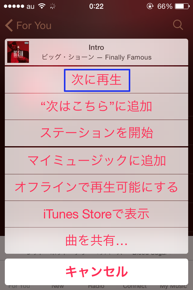 Apple_Music_tugiha_tugini11