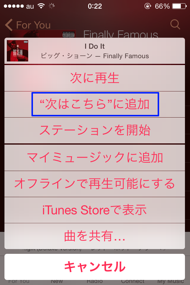 Apple_Music_tugiha_tugini14